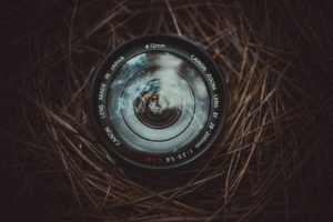 camera lens in a twig nest